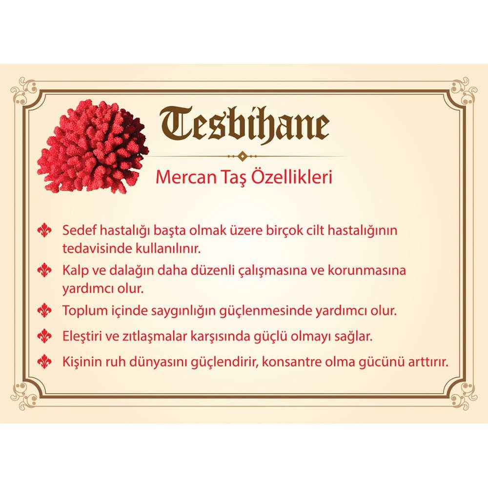 925 Ayar Gümüş Zirkon Taş İmameli Küre Kesim Kırmızı Mercan Tesbih (M-2)